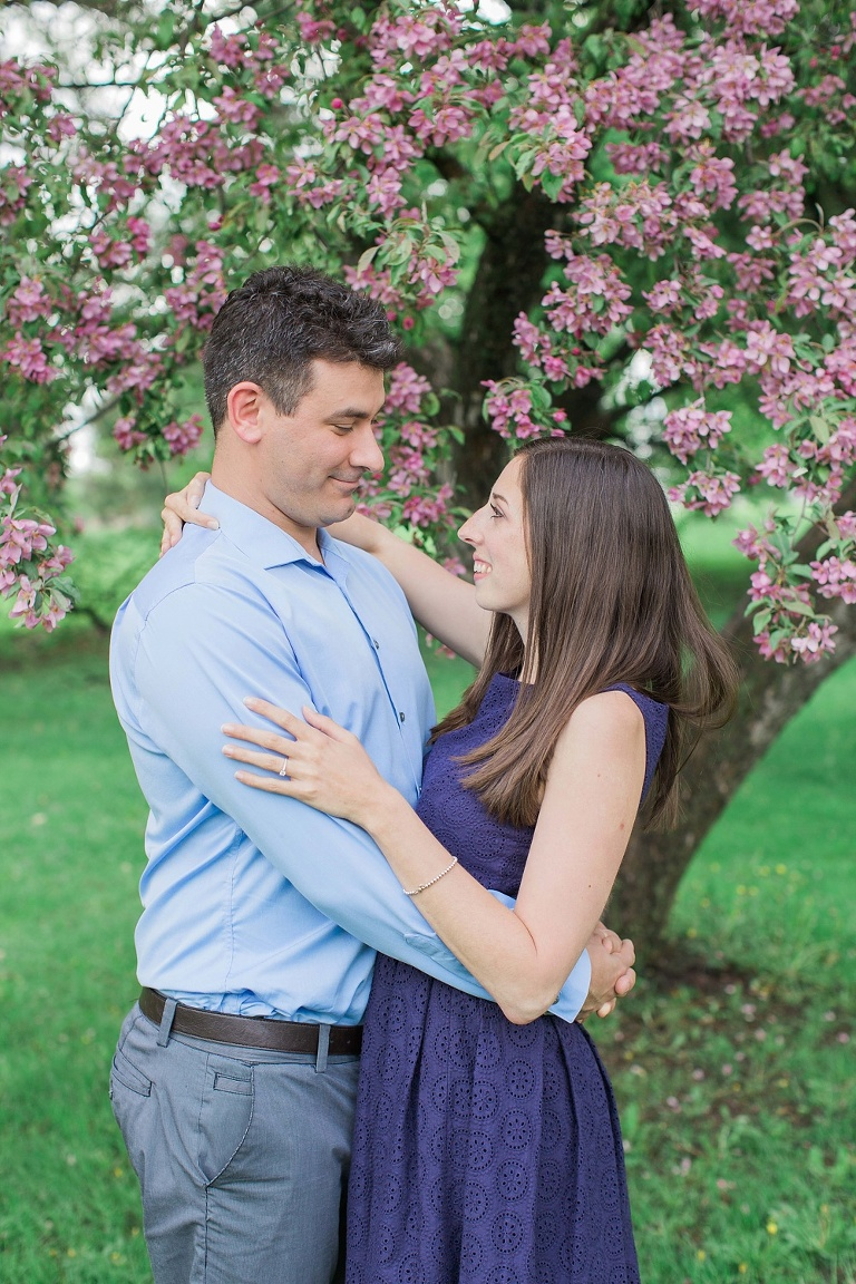 Ottawa Ornamental Gardens engagement photos with pink apple blossom trees in bloom